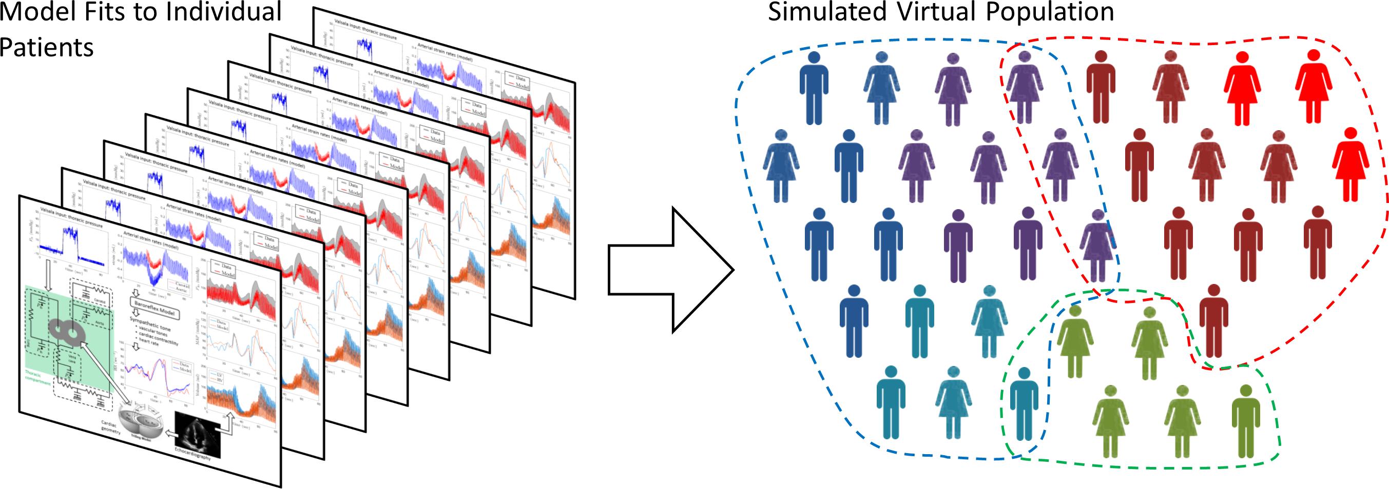 Virtual Population